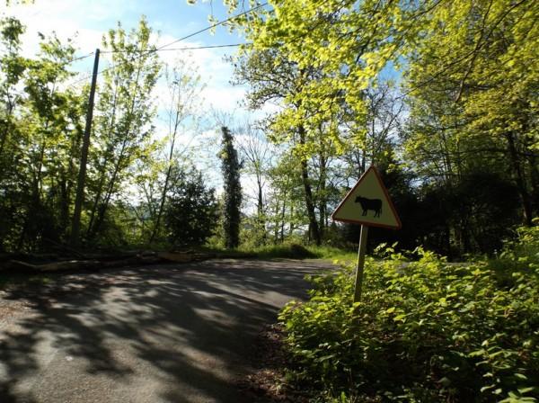 Col du Couret, Chiroulet 2 mai 2015 010