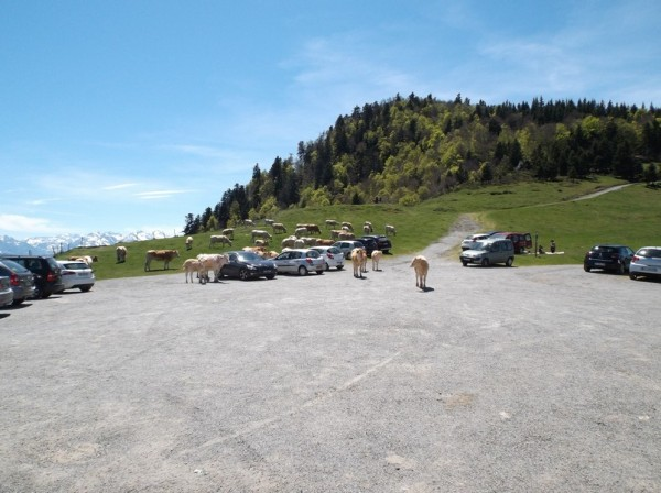 Tourmalet, Aspin, Hourquette 10 mai 2015 164