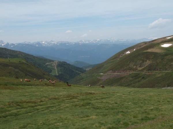 Sortie Ariège 11 juin 2015 092