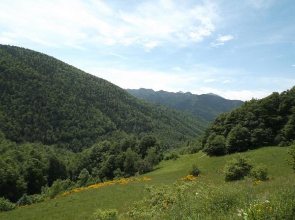 Sortie Ariège 11 juin 2015 125