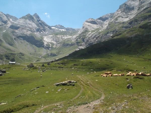 L'Auberge du Maillet à 3 km du sommet