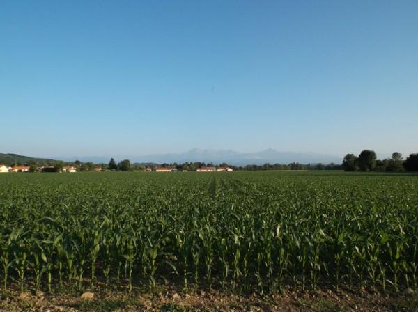 Vue sur les Pyrénées (Pic du Midi et Montaigu), j'aurais voulu voir ça dès le matin
