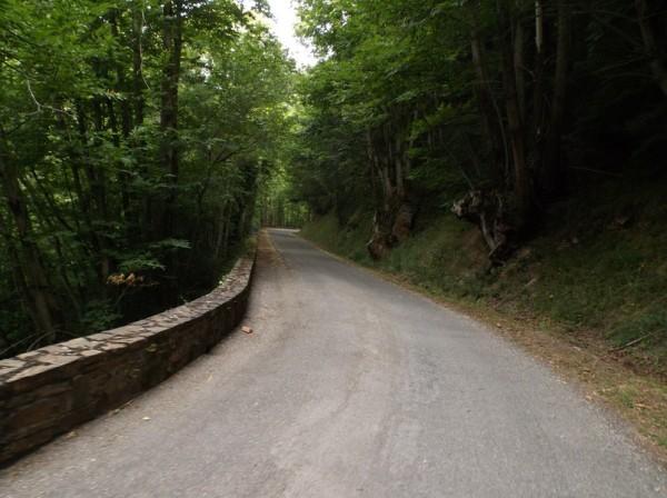 La route est vraiment calme