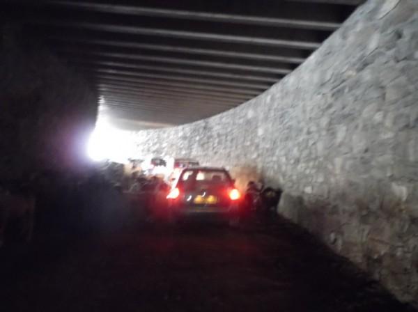 Dans le tunnel, y a du monde : des voitures et des brebis.
