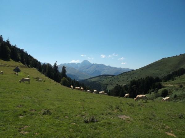 Superbe vue sur le Pic du Midi depuis le sommet.