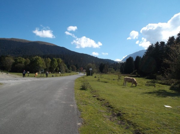 A la fin de la traversée du plateau de Payolle, la montée reprend.