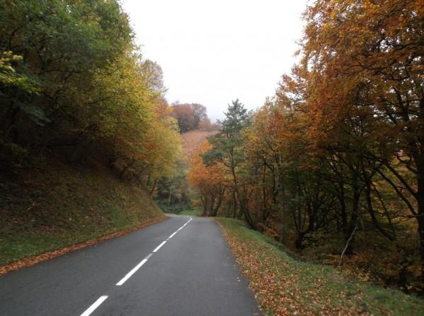 Les couleurs d'automne sont sympas malgré le ciel gris.