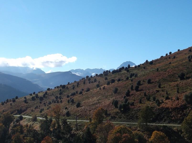 Dans la descente du col d'Aspin avec le Pic du Midi qui dépasse.