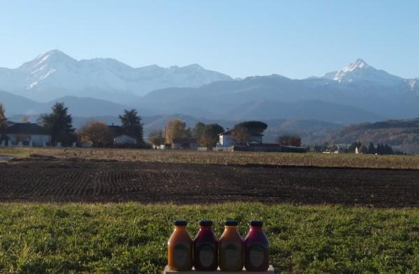 Jus-Pyrénées-3-décembre-2015-036bis