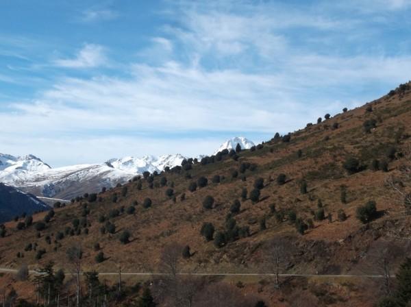 Col d'Aspin 25 janvier 2016 095