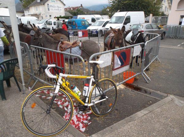 J'ai placé le vélo en bonne compagnie pendant que j'étrais à la fête de la Biodiversité.