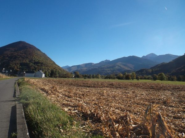 Une fois la livraison à Bagnères faite. Le Pic du Midi à droite, veille.